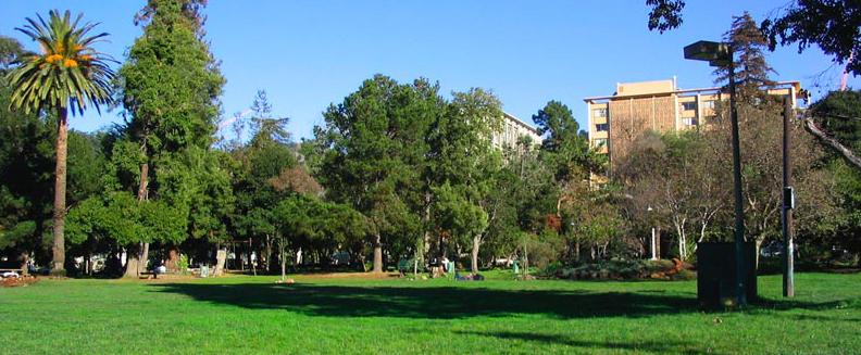 People's Park in Berkeley