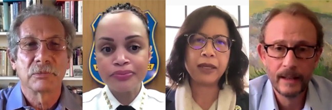 Reimagining Policing panel